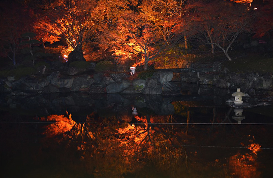 桜山公園の日本庭園
