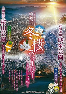 冬桜パンフレット 表